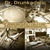 Sammelsurium von Dr. Drunkadelic