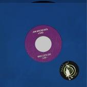 Whole Lotta Love (Live) by John Winston Berta
