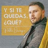 Y Si Te Quedas, Qué? de Pablo Ocampo