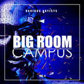 Big Room Campus, Vol. 4 by Various Artists
