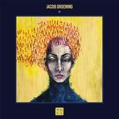 XX by Jacob Groening