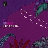 Tanananá by Travis Birds