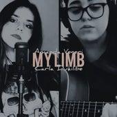My Limb (Cover) di Amanda Veneri