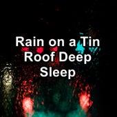 Rain on a Tin Roof Deep Sleep by Nature Soundscape