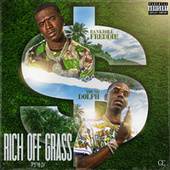 Rich Off Grass (Remix) fra Bankroll Freddie