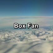 Box Fan by White Noise Babies