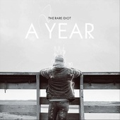 A Year by The Rare Idiot