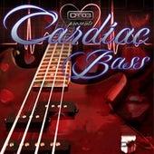 Cardiac Bass Riddim by Various Artists