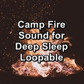 Camp Fire Sound for Deep Sleep Loopable by Spa Relax Music