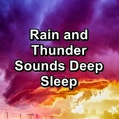 Rain and Thunder Sounds Deep Sleep by Relaxing Sounds of Nature