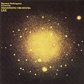 Between Nothingness & Eternity by The Mahavishnu Orchestra