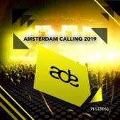 Amsterdam Calling 2019 von Various Artists