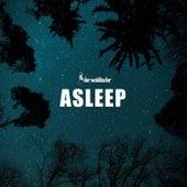 Asleep by Der Waldläufer
