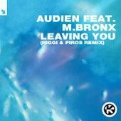 Leaving You (Riggi & Piros Remix) von Audien