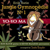 Jungle Gymnopedie No. 1 by Yo-Yo Ma