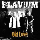 Old Love (Live at De Noot, Hoogland, 10/10/2010) by Flavium