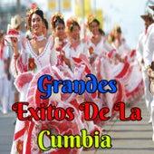 Grandes Exitos de la Cumbia by Grupo Néctar, Jackita, Juaneco y su Combo, Grupo Mojado, Grupo 5