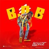 B.O.B by Lionize
