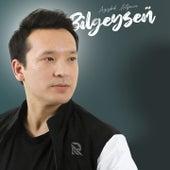 Bilgeyseñ by Azizbek Aitjanov