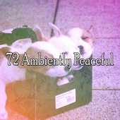 72 Ambiently Peaceful von Rockabye Lullaby