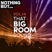 Nothing But... That Big Room Sound, Vol. 14 by Various Artists