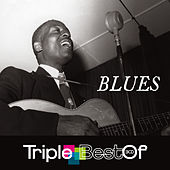 Triple Best Of Blues de Various Artists