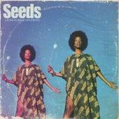Seeds von Georgia Anne Muldrow