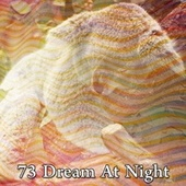 73 Dream at Night by Deep Sleep Music Academy