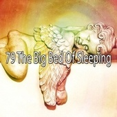 79 The Big Bed of Sleeping von Best Relaxing SPA Music