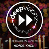 Never Knew (Sandy Rivera's Classic Mix) von Kings Of Tomorrow