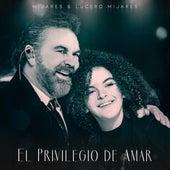 El Privilegio De Amar by Mijares