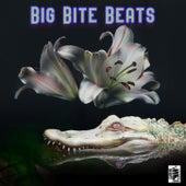 Big Bite Beats von Various Artists