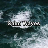 Calm Waves by Chakra