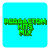 Reggaeton Hits Mix by Various Artists