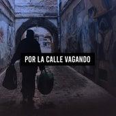 Por La Calle Vagando de Various Artists