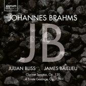 Sonata in E-Flat Major, Op. 120 No. 2: II. Allegro appassionato von Julian Bliss
