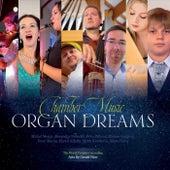 Organ Dreams by Michal Mesjar