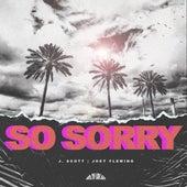 So Sorry by J Scott