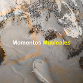 Momentos Musicales by Various Artists
