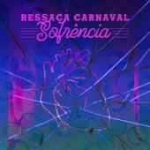 Ressaca Carnaval Sofrência von Various Artists