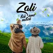 Всё это твоё de MC Zali
