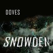 Snowden fra Doves