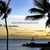 How Deep Is Your Love (Instrumental) de Joseph Sullinger