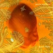 Half-Life by Pale Saints
