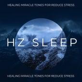 Hz Sleep: Healing Miracle Tones for Reduce Stress, Insomnia Relief, Deep Sleep Music by Hz Sleep Project