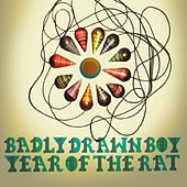 Year Of The Rat de Badly Drawn Boy
