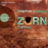 Zahltag - Zorn, Band 10 (Ungekürzt) by Stephan Ludwig