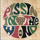 Pissing In The Wind by Badly Drawn Boy