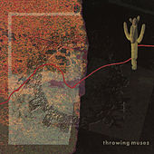 Dizzy by Throwing Muses