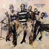 NJOKA (Radio Edit) by Mokoomba